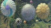 tgc-perrier-hot_air_balloons